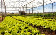 Cursos de Ciências Agrárias da Unimar realizam a 33º Secam
