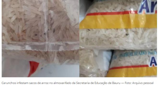 Carunchos infestam sacos de arroz no almoxarifado da Secretaria de Educação de Bauru