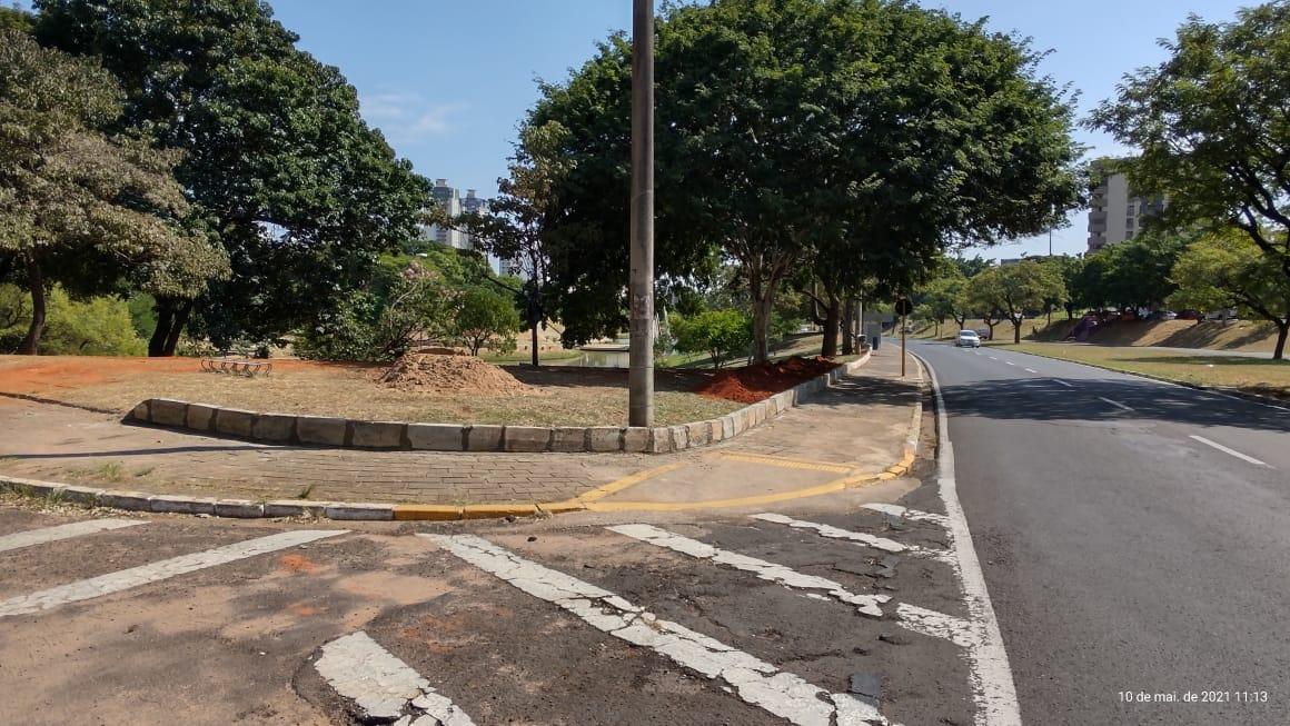 Semma contém erosão que ameaçava árvore no Parque Vitória Régia