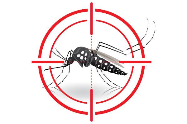 Baruru registra novos casos de dengue