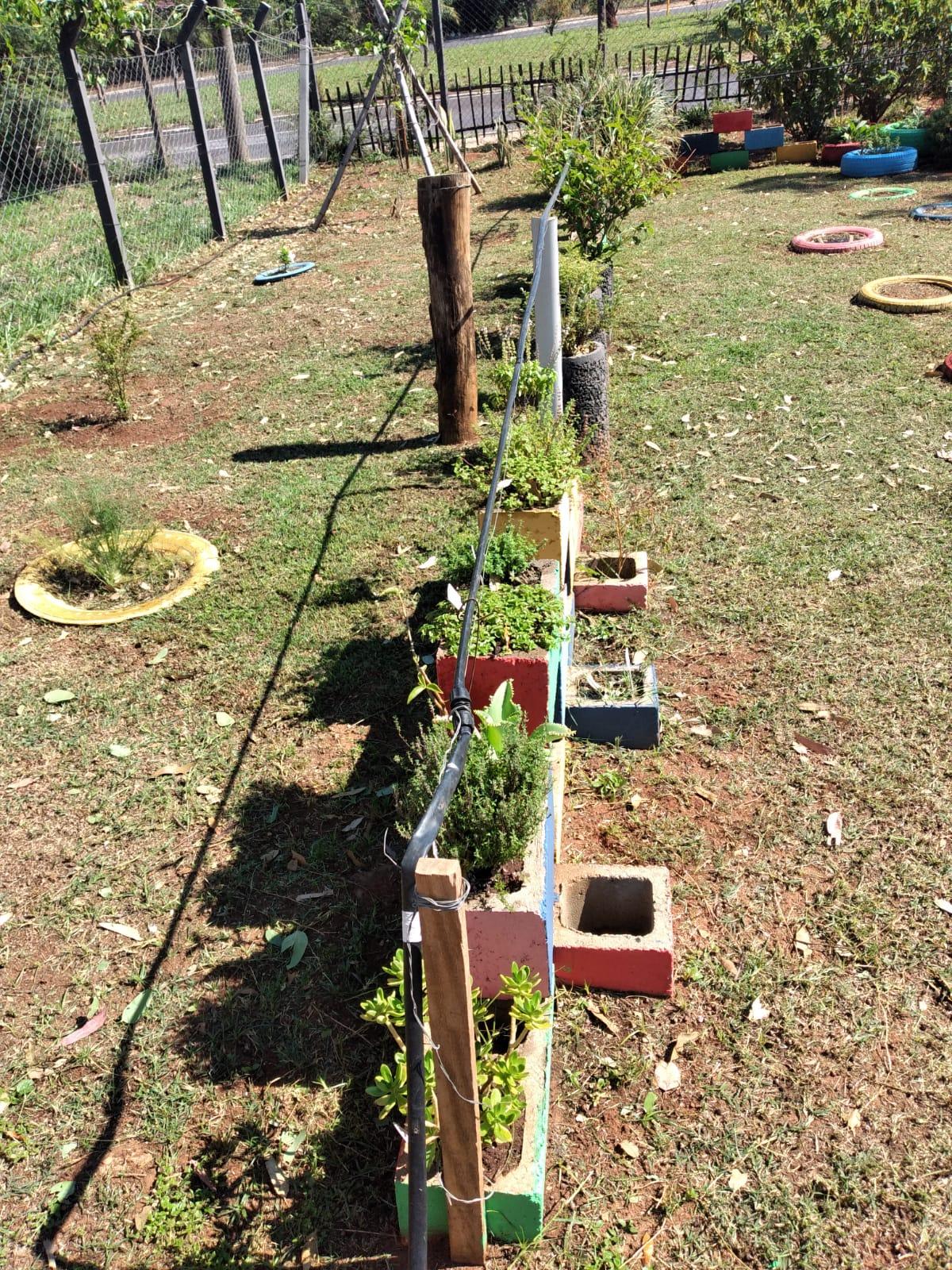 Jardim Sensorial do Projeto Cemeia chega a 70 plantas medicinais e aromáticas e atrai visitantes